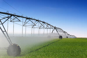 As farming technology evolves, irrigation techniques change to meet the needs of ever more sensitive crops.