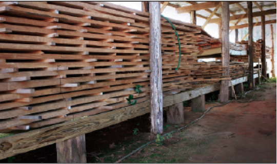 Measuring the moisture content in your next wood project is crucial to the structure's safety and longevity.
