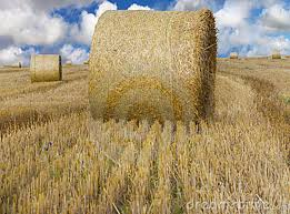Baled hay requires a longer probe to get a measurement of the moisture at the center of the bale.