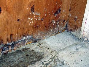 Wet concrete is a risk factor during construction.