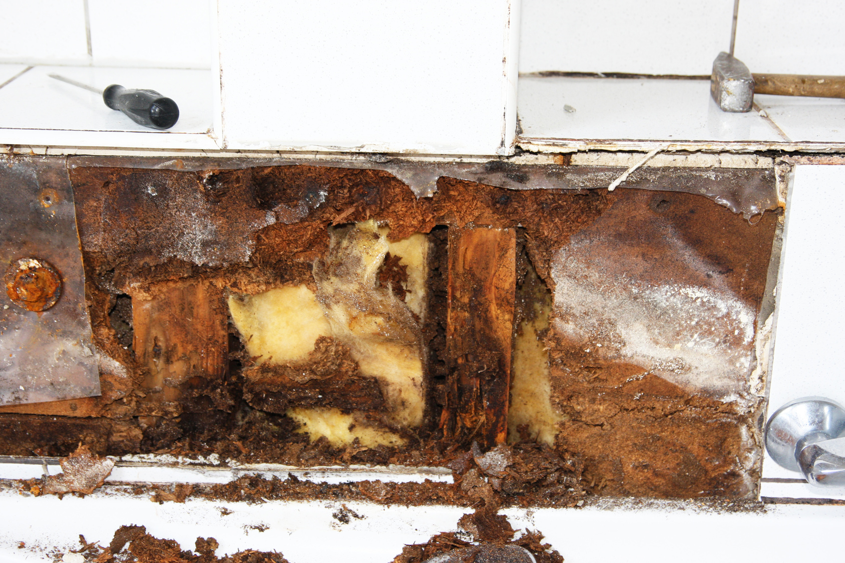 Wet insulation loses its ability to keep a building's temperature stable, and can become a mold colony if given enough time.