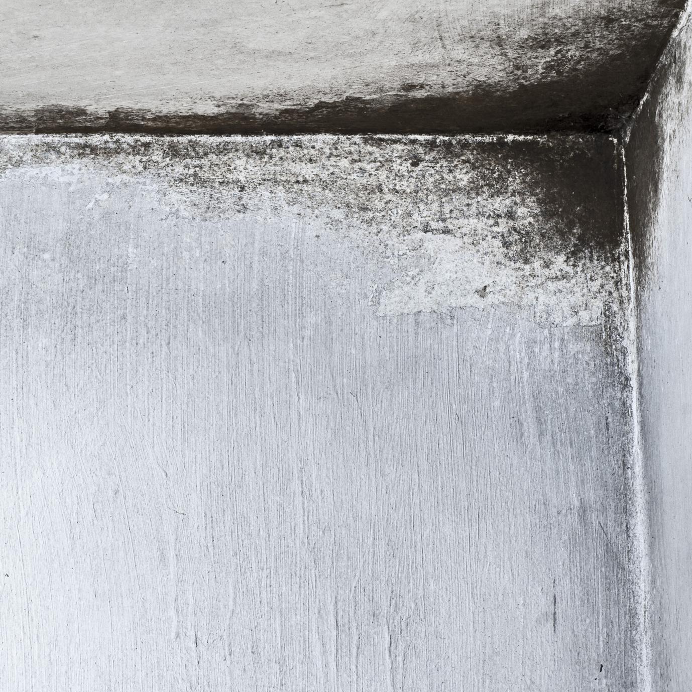 mold concrete