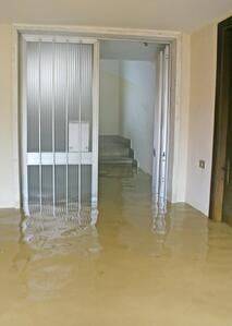 Signs of water damage to a structure aren't always so obvious.
