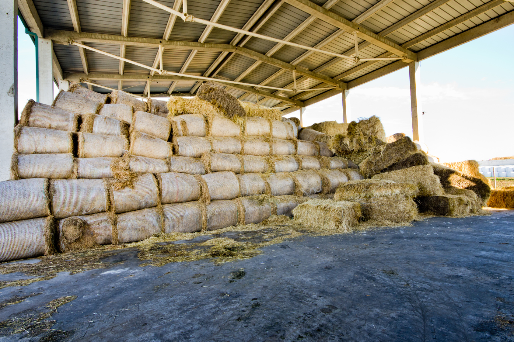 finding a way to shelter hay from the effects of the elements is an important part of preserving it for when you need it.