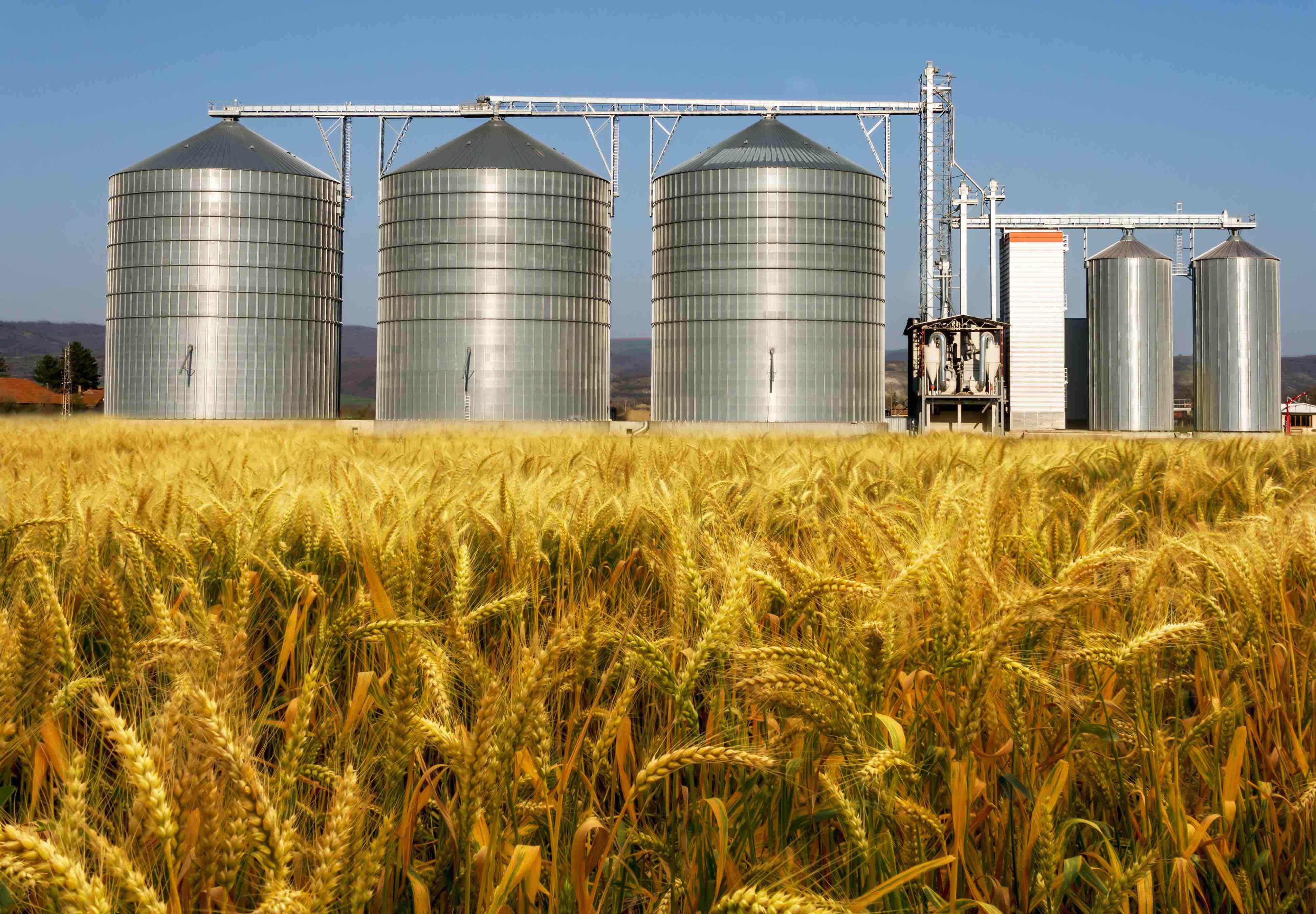 preparing crops for long term storage with grain moisture tester.jpg