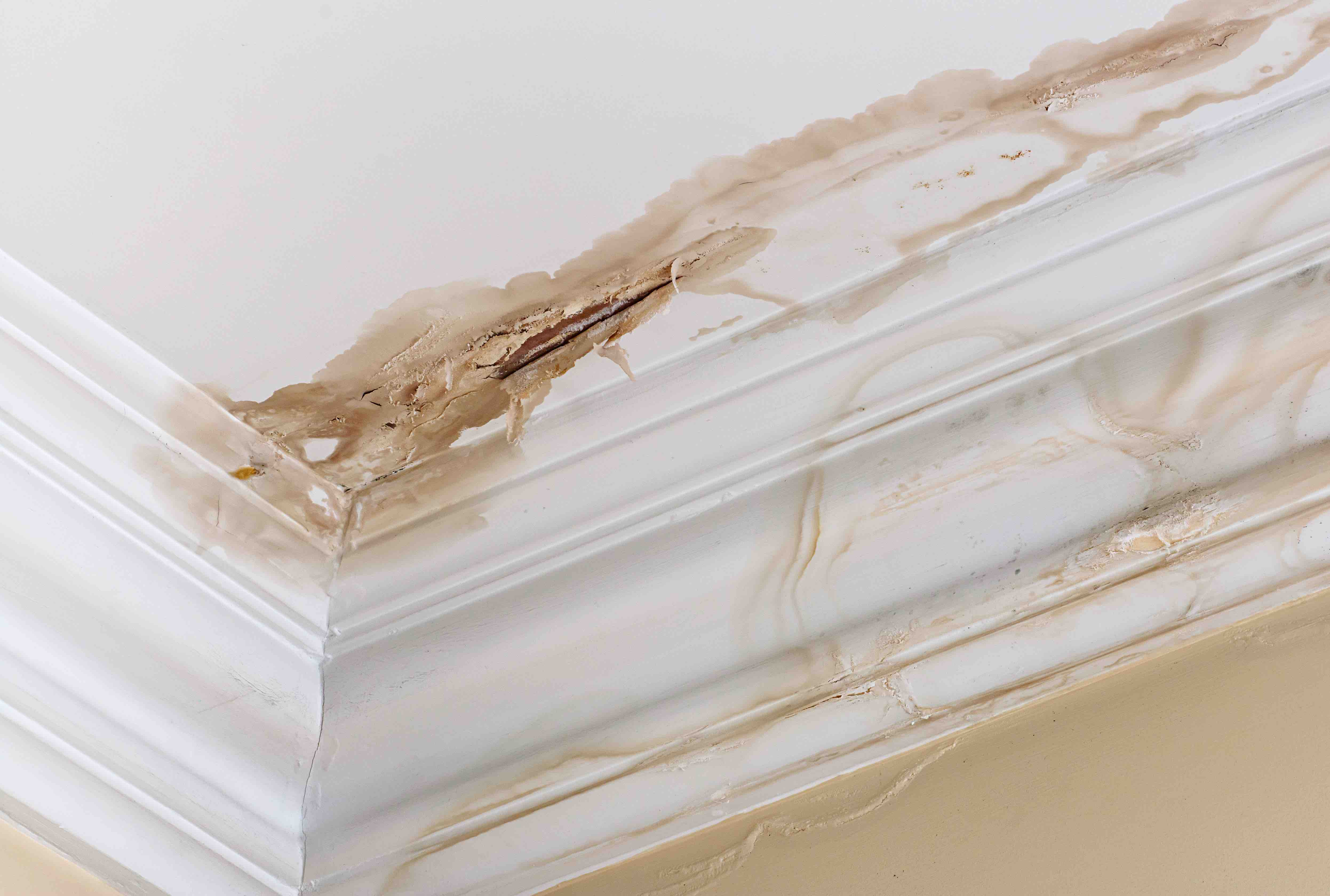 Water damage can create unsightly messes in a structure, and can even endanger occupants.