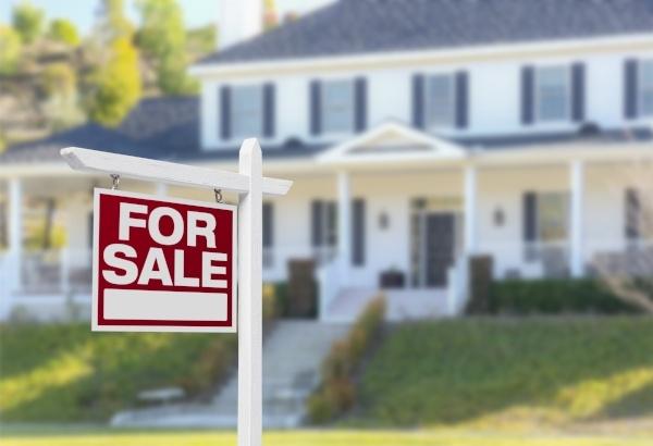 moisture meters for real estate customers-527443-edited.jpeg